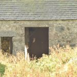 Barn Owl Auchmair 26 Oct 2017 Valerie Leith P